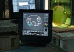 Cremator head screen