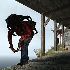 Poison Zombie and Standard Headcrab on the cliff path.