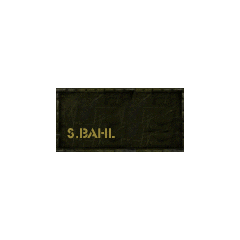 S. Bahl's trunk top.