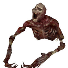 Fast Zombie torso, without Headcrab.