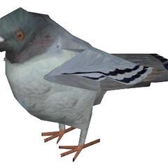 <i>Half-Life 2</i> pigeon model.
