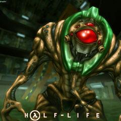 Half life alien names