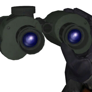 The Binoculars being held.