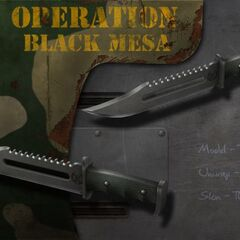 Another Combat Knife.