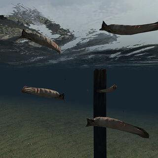 Leeches in <i>Half-Life 2</i>.