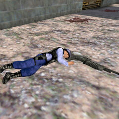Security guard after being killed by a <a href=
