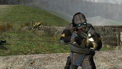 Soldier antlion