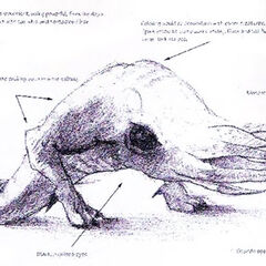 Concept art for the first, white Bullsquid.