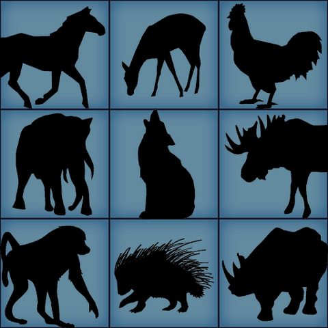 Animal shapes used for calibration.