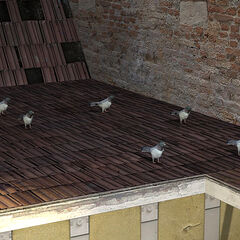 Flock of pigeons on a City 17 roof.