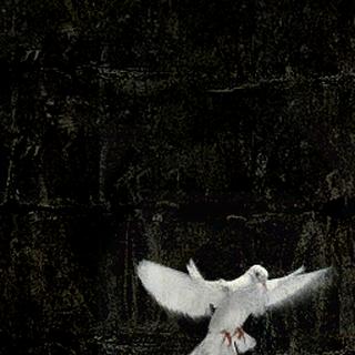 Propaganda poster featuring a dove.