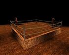 Boxing0038