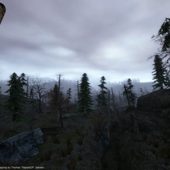 Yet, another Deadlock Conflict in forest Screenshot.