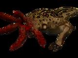 Bullsquid