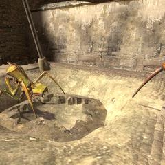 Antlions near a burrow in <a href=
