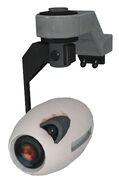 Portal camera