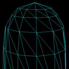 The cut shield model, viewed in wireframe mode.