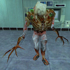 A Gonome in Black Mesa. Note the outline of eye sockets on the Headcrab.