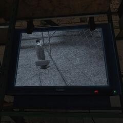 The G-Man seen through a security camera.