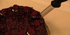 Glados screens cake005