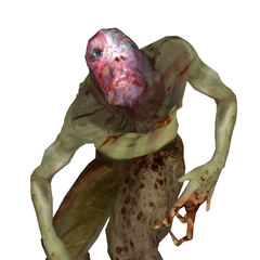 Beta Fast Zombie, without the Fast Headcrab.