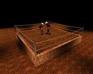 Boxing0042