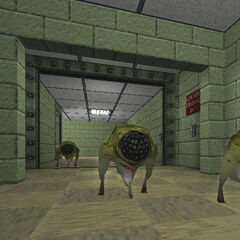 Early Houndeyes in an early Black Mesa.