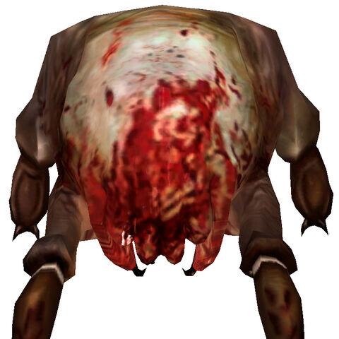 Front of the Headcrab