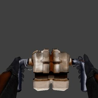 The Leaked 2002 Viewmodel of the Gravity gun.