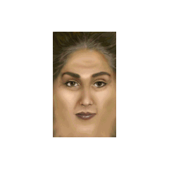 The face texture of the <i>Half-Life</i> Holographic Assistant model.