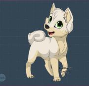 Evan Pup