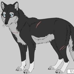 Shoko in her alternate form (cannot be controlled and limited; made on Kaylink's Wolf Maker: <a rel=