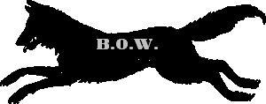 File:BOW.JPG