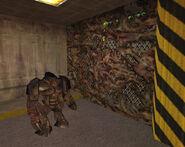 Snark mine c3a10014