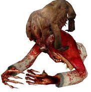 Zombie torso