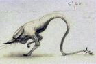 Alien Fauna UC