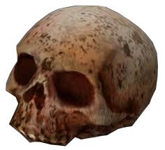 HL2 skull