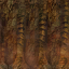 Minibarnacle
