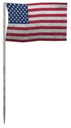 Moon US flag