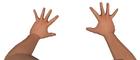 Portal male hands viewmodel