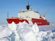USCGC Healy in ice