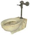Np toilet