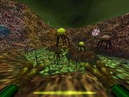 Xen attacks hud