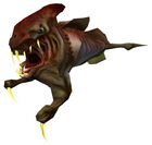 Ichthyosaur hl1