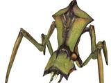Hormiga León Soldado