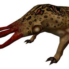 Modelo del Bullsquid