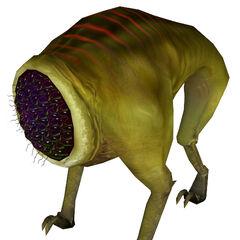 Modelo rehecho del Houndeye para Half-Life 2