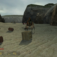 Antlion Guardián Emergiendo en el capitulo Bunkers de Half-Life 2