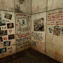 Detalle de la esquina derecha de la madriguera encontrada en la cámara 17