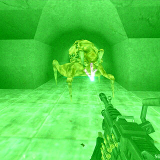 Voltigores encontrados en los canales subterráneos en Black Mesa